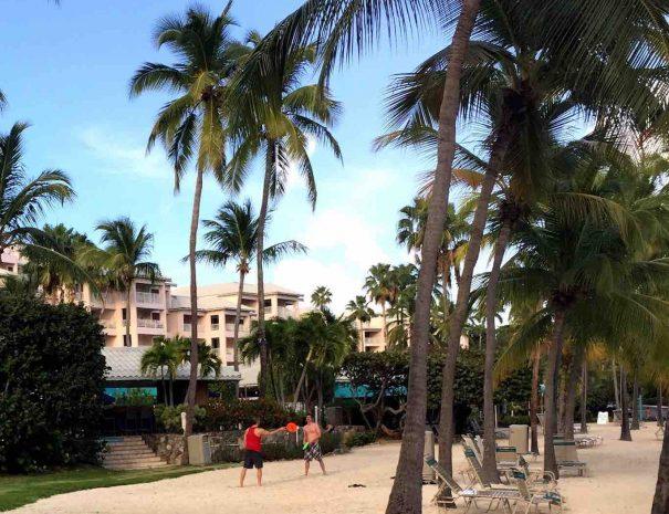 St Thomas Vacation Rentals, USVI, St Thomas Vacation Rental, vrbo, airbnb, homeaway, trip advisor, flipkey, vacationrentals, elysian beach resort, cowpet bay, red hook, redhook, east end, east end eden, virgin islands